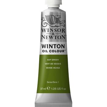 Winton Oil Colour 37ml Sap Green