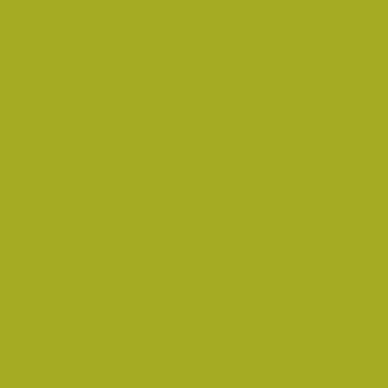 Amsterdam Acrylic 120ml Olive Green Light