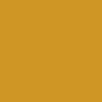 Amsterdam Acrylic 120ml Yellow Ochre