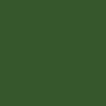 Amsterdam Acrylic 120ml Olive Green Deep