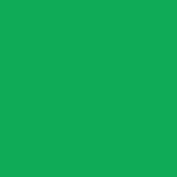 Amsterdam Acrylic 120ml Brilliant Green
