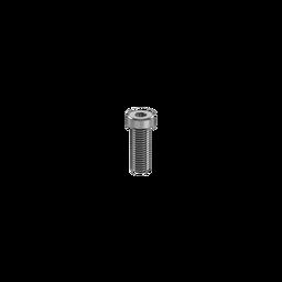 M6 1.0 x 12mm Screw