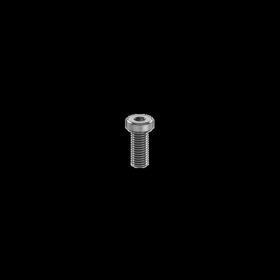 M8 x 20mm Screw