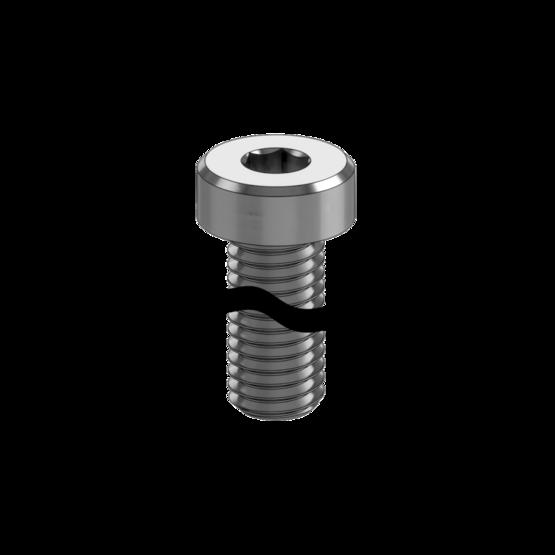 M8 x 55mm Screw