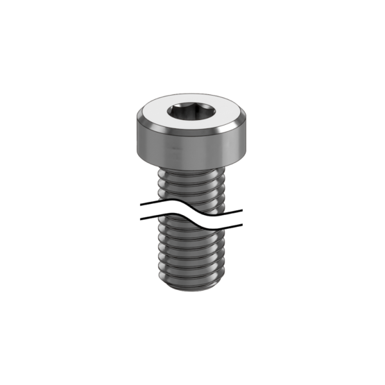 M8 x 70mm Screw