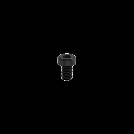 M6 1.0 x 10mm Screw