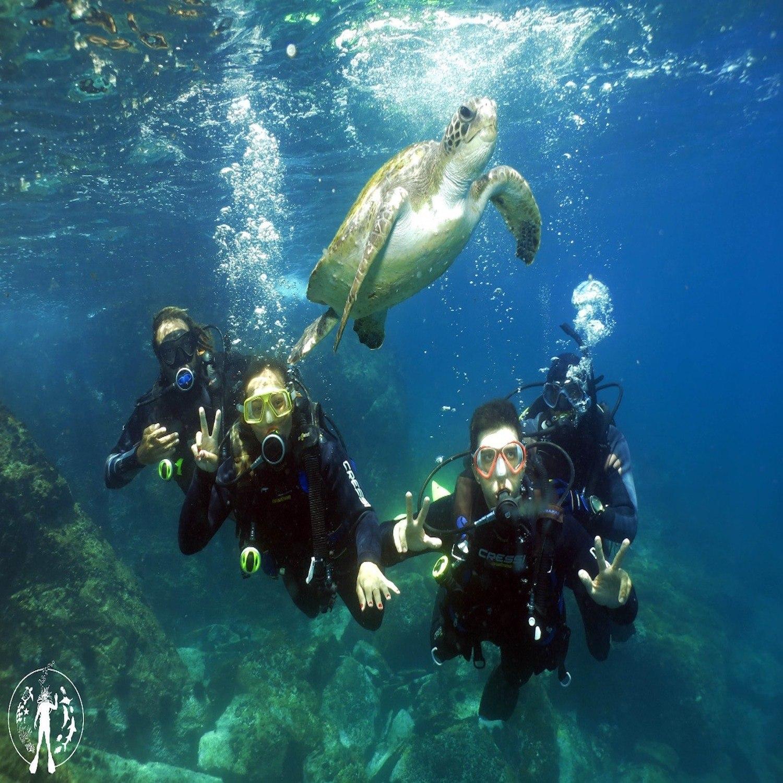 Curso de Mergulho Básico - Cabo Frio-RJ