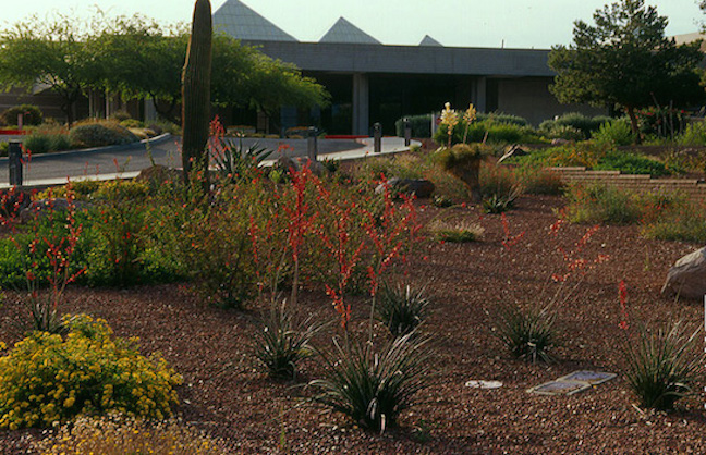 SMG to Manage Tucson Convention Center