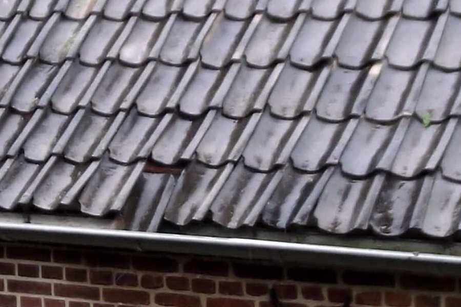 Dak alle dak werkzaamheden aan het plat of schuine dak slim