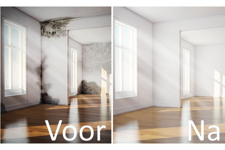 schimmel verwijderen 3 simpele stappen voor schimmel op plafond muur 2018. Black Bedroom Furniture Sets. Home Design Ideas