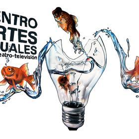 Centro de Artes Visuales