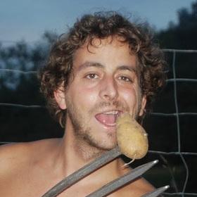 Toni Frito