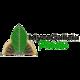 MycoGalicia Plantae