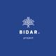 BIDAR project