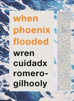 when phoenix flooded