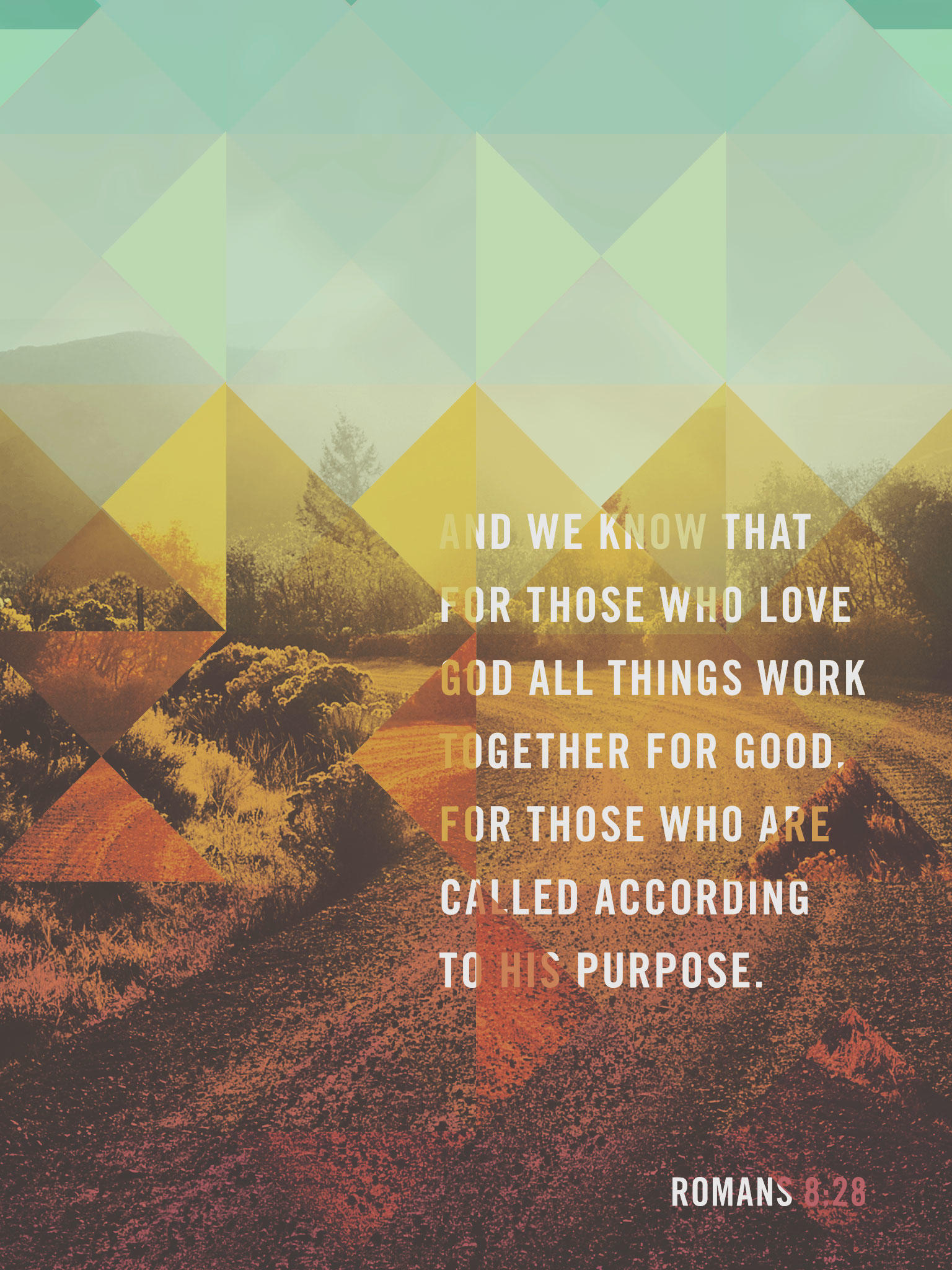 Romans 8:28 - The Verses Project