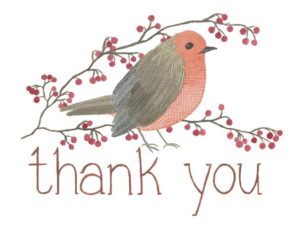 Thank you Robin