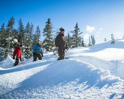 Winter Wonderland Snowshoe Tour