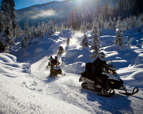 Snowmobile BC Tour