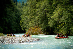 Rafting - Cheakamus River Tour