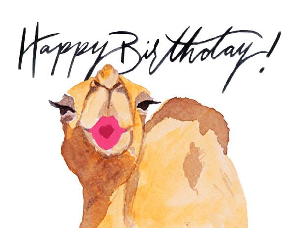 Birthday Camel