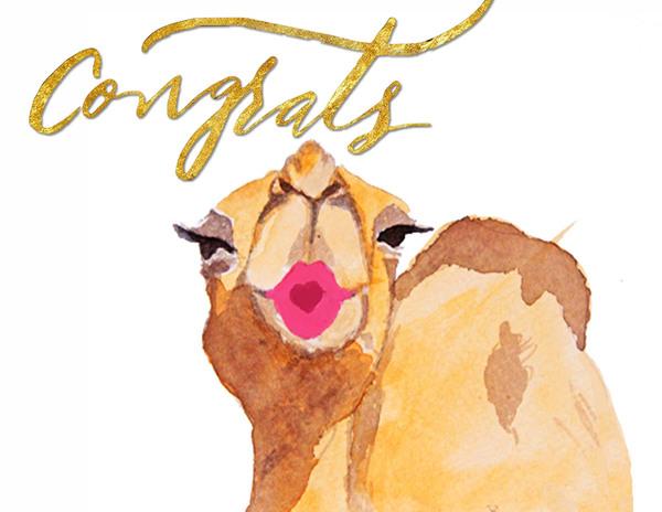 Congrats Camel