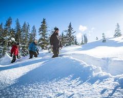 Natural Mystic Snowshoe Tour