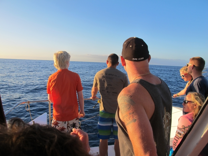 FILE - This Jan. 21, 2016 file photo shows tourists looking out on the horizon as their boat searches for dolphins in waters off Waianae, Hawaii. Federal regulators are proposing a widespread ban on swimming with Hawaii's spinner dolphins to allow the nocturnal creatures to rest during the day. The National Marine Fisheries Service proposal announced Tuesday, Aug. 23, 2016, would allow some limited exceptions, given dolphins sometimes approach people. (AP Photo/Audrey McAvoy, File)