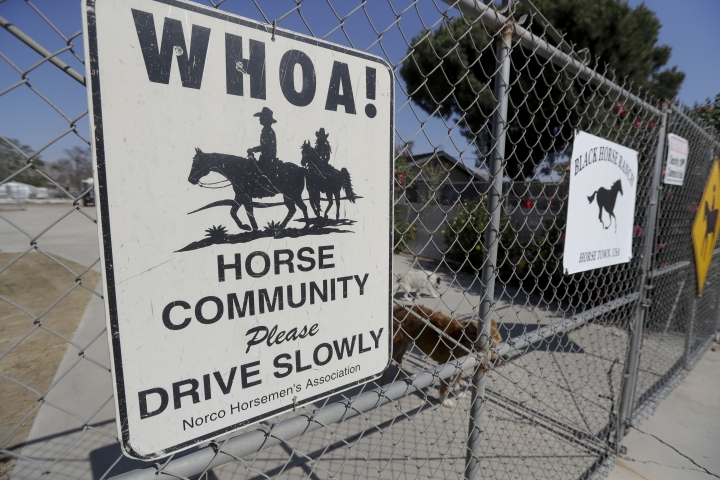In this Thursday, Aug. 4, 2016 photo, a sign across the drive way of the president of the Norco Horsemen's Association, Bonnie Slager's house, reminds people of the horse culture, in Norco, Calif. The Southern California city has rejected plans for a proposed Hindu cultural center partly because officials say the large, domed building doesn't fit in with its Old West-style motif. (AP Photo/Chris Carlson)