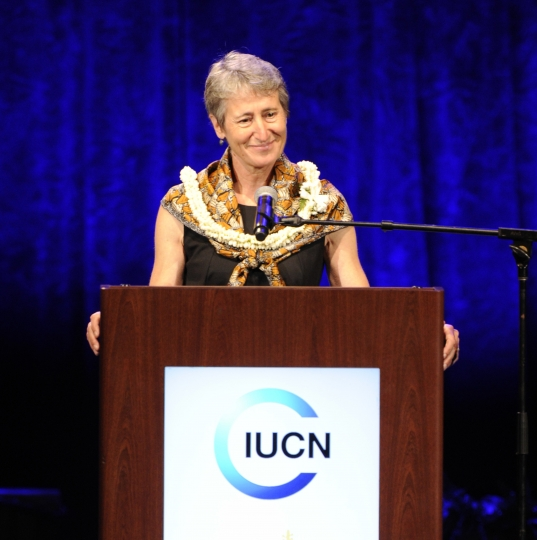 U.S. Secretary of the Interior Sally Jewell addresses the gathering at the International Coalition for the Conservation of Nature World Conservation Congress opening ceremony, Thursday, Sept. 1, 2016, at the Neal S. Blaisdell Center arena in Honolulu. (Bruce Asato/The Star-Advertiser via AP)