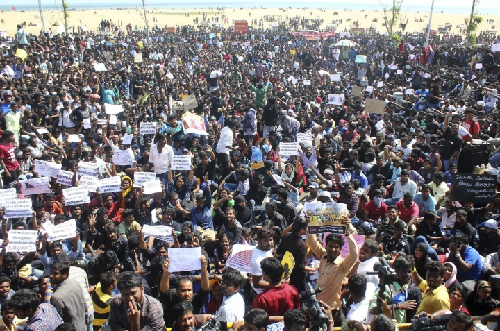 """Protestors gather at Marina beach demanding a ban be lifted on the traditional sport of bull-taming, or Jallikattu, in Chennai, India, Wednesday, Jan. 18, 2017. The sport of jallikattu, held during the four-day """"Pongal"""" marking the winter harvest, involves releasing a bull into a crowd of people who attempt to grab it and ride it. It is popular in Tamil Nadu state but was banned by India's top court in 2014 after animal rights groups argued it was cruel to the animals. (AP Photo)"""