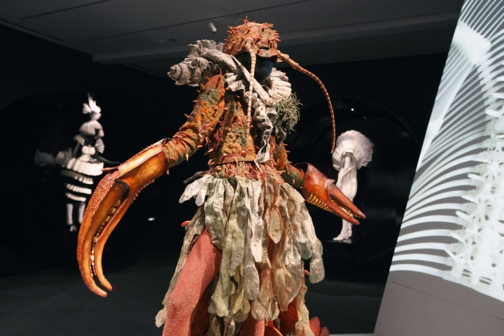 """In this Thursday, Feb. 16, 2017 photo, a piece entitled """"Hermecea"""" by Jan Kerr is seen as part of The """"WOW - World of Wearable Art"""" show at the Peabody Essex Museum in Salem, Mass. (AP Photo/Michael Dwyer)"""