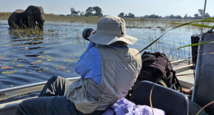 This Sept. 4, 2016 photo taken in Botswana's Okavango Delta, shows a photographer collecting an image of an elephant foraging for food. The operator of this specialized photo tour used different modes of transportation ranging from helicopters to boats and safari vehicles to provide wildlife viewing — no matter what the terrain. One of the best ways to approach and photograph wildlife is by boat. (Dean Fosdick via AP)