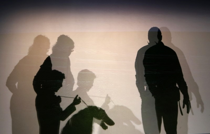 Silhouettes of people and a dog are seen backstage before the start of the New Yorkie Runway Doggie Fashion Show in New York February 7, 2013. REUTERS/Shannon Stapleton