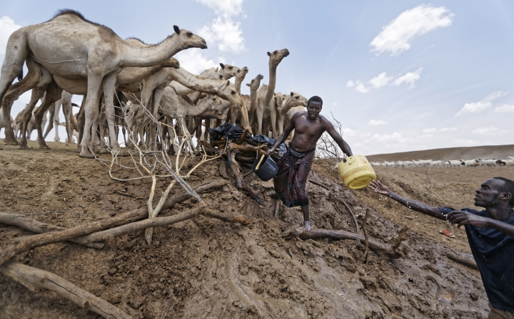 "Camel herders scoop up water in plastic buckets from one of the few watering holes in the area, to water their animals near the drought-affected village of Bandarero, near Moyale town on the Ethiopian border, in northern Kenya, Friday, March 3, 2017. The U.N. humanitarian chief, Stephen O'Brien, toured Bandarero village on Friday and called on the international community to act to ""avert the very worst of the effects of drought and to avert a famine to make sure we don't go from what is deep suffering to a catastrophe."" (AP Photo/Ben Curtis)"