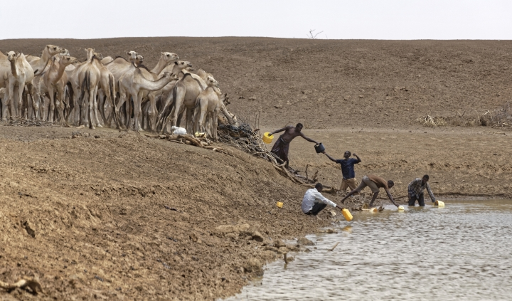 """Camel herders scoop up water in plastic buckets from one of the few watering holes in the area, to water their animals near the drought-affected village of Bandarero, near Moyale town on the Ethiopian border, in northern Kenya Friday, March 3, 2017. The U.N. humanitarian chief, Stephen O'Brien, toured Bandarero village on Friday and called on the international community to act to """"avert the very worst of the effects of drought and to avert a famine to make sure we don't go from what is deep suffering to a catastrophe."""" (AP Photo/Ben Curtis)"""