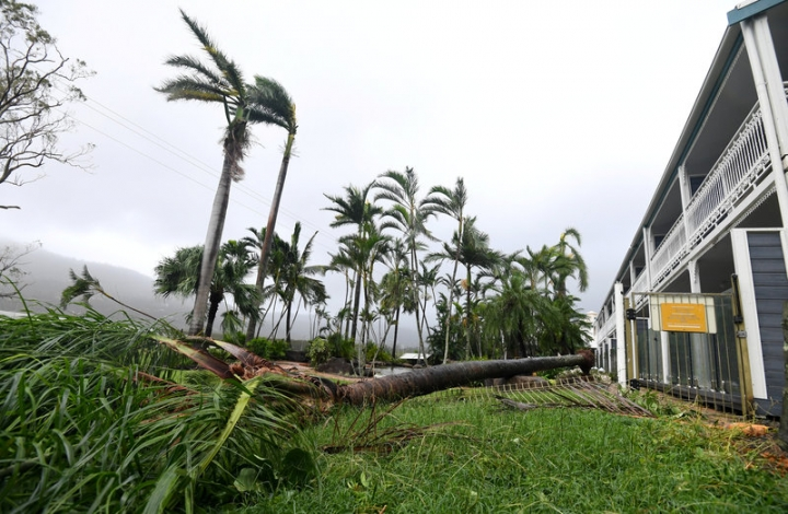 A tree lies on the ground near a motel after falling during strong winds from Cyclone Debbie at Airlie Beach, located south of the northern Australian city of Townsville. AAP/Dan Peled/via REUTERS