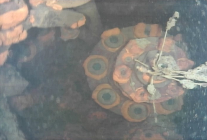 This image captured by an underwater robot provided by International Research Institute for Nuclear Decommissioning shows a part of a control rod drive of Unit 3 at Fukushima Dai-ichi nuclear plant in Okuma town, northeastern Japan Wednesday, July 19, 2017. The underwater robot has captured images and other data inside Japan's crippled nuclear plant on its first day of work. The robot is on a mission to study damage and find fuel that experts say has melted and mostly fallen to the bottom of a chamber and has been submerged by highly radioactive water. (International Research Institute for Nuclear Decommissioning via AP)
