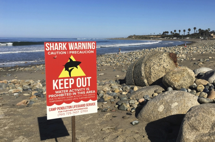 "FILE - In this Sunday, April 30, 2017 photo, a sign warns beach goers at San Onofre State Beach after a woman was attacked by a shark in the area Saturday, along the Camp Pendleton Marine base in San Diego County, Calif. The surfer attacked by a shark off Southern California earlier this year recalls punching the predator and digging her fingers into its eye. Leeanne Ericson tells ABC's ""Good Morning America"" that she initially thought a curious seal was knocking the underside of her surfboard near San Diego last April. (Laylan Connelly/The Orange County Register via AP, File)"