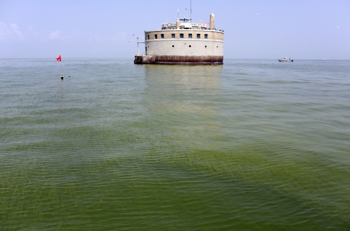 FILE – In this Aug. 3, 2014, file photo, the water intake crib for the city of Toledo, Ohio, is surrounded by an algae bloom on Lake Erie, about 2.5 miles off the shore of Curtice, Ohio. Researchers are working on creating an early warning system that can spot when algae begins showing up on hundreds of lakes across the U.S., using real-time data from satellites that already monitor harmful algae hotspots on Lake Erie in Ohio and on the Chesapeake Bay along the East Coast. (AP Photo/Haraz N. Ghanbari, File)