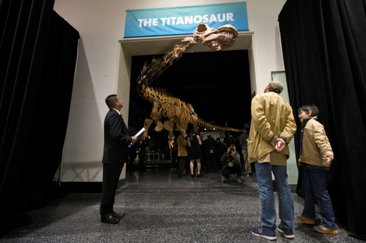 File-This Jan. 14, 2016, file photo shows visitors to the American Museum of Natural History examining a replica of a 122-foot-long dinosaur on display at the American Museum of Natural History in New York. A study proclaims a newly named species the heavyweight champion of all dinosaurs. The plant-eating giant is the largest of a group of dinosaurs called titanosaurs (tye-TAN'-u-sawr). At 76 tons (69 metric tons), the behemoth was as heavy as a space shuttle. A scientific paper released Tuesday, Aug. 8, 2017, describes and dates the fossils found in southern Argentina in 2012. A skeleton of the dinosaur is already on display at the American Museum of Natural History in New York. (AP Photo/Mary Altaffer, File)