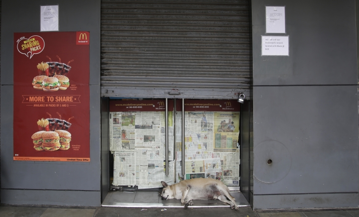 A stray dog sleeps at the entrance to a partially closed McDonald's outlet in New Delhi, India, Tuesday, Aug. 22, 2017. McDonald's India has announced it will close nearly 170 McDonald's outlets in northern and eastern India after the American fast food giant decided to terminate a franchise agreement with its Indian partner. (AP Photo/Altaf Qadri)