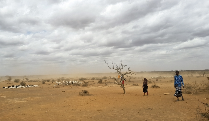 In this photo taken Sunday, Sept. 3, 2017, dust clouds blow across the parched landscape in the Danan district of the Somali region of Ethiopia, which hasn't seen significant amounts of rain in the past three years. Despite economic growth in the past decade that has made Ethiopia one of Africa's fastest-developing countries, rural areas are suffering as the nation faces its worst drought in years. (AP Photo/Elias Meseret)