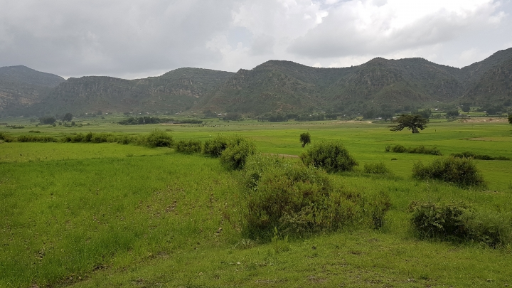 In this photo taken Saturday, Sept. 2, 2017, lands that were previously damaged by drought are seen after their recovery due to intensive water and land conservation efforts, at the Adi Felesti irrigation project in the northern Tigray region of Ethiopia. Despite economic growth in the past decade that has made Ethiopia one of Africa's fastest-developing countries, rural areas are suffering as the nation faces its worst drought in years. (AP Photo/Elias Meseret)