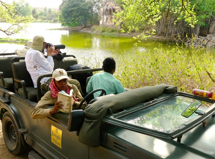 In this May 9, 2017 photo, a photographer is shown focusing on a tiger laying by the water on a hot day in Ranthambore National Park in northern India. Operators of these photo safaris typically use open-top vehicles containing a driver, naturalist and no more than two photographers. Everyone has a window seat. Wildlife sightings are opportunistic and require a certain degree of luck—especially for tigers in India. (Dean Fosdick via AP)