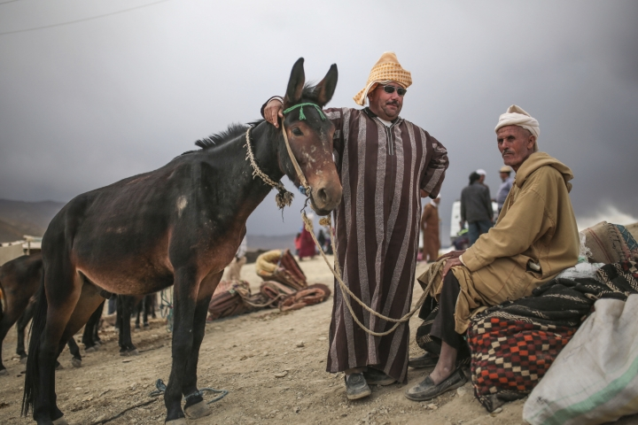 In this Friday, Sept. 22, 2017 photo, Berber merchants wait for customers at a cattle market during the annual festival of Imilchil, in Morocco's Atlas mountains. What started as an annual marriage festival has become an economic boon for a tiny Berber village tucked into in the foothills of Morocco's Atlas Mountains. (AP Photo/Mosa'ab Elshamy)