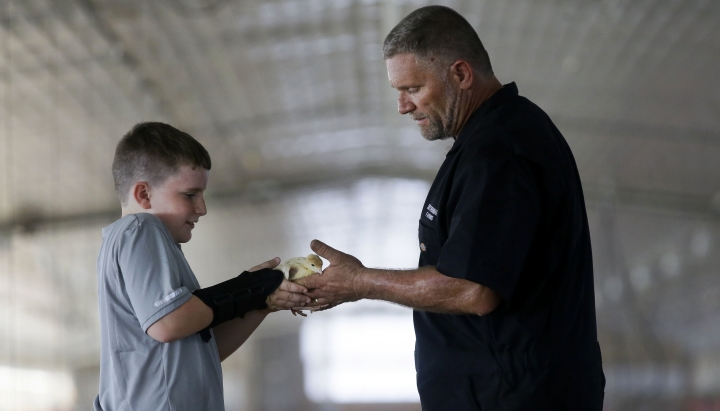 In this Monday, Oct. 16, 2017 photo, Beau Smotherman, left, hands a baby turkey to his father Ken Smotherman in a poult barn at their family turkey farm near Waco, Texas. The farm is involved in a pilot project by Cargill's Honeysuckle White brand that allows consumers to be able to find out where the turkeys they buy are raised. (AP Photo/LM Otero)