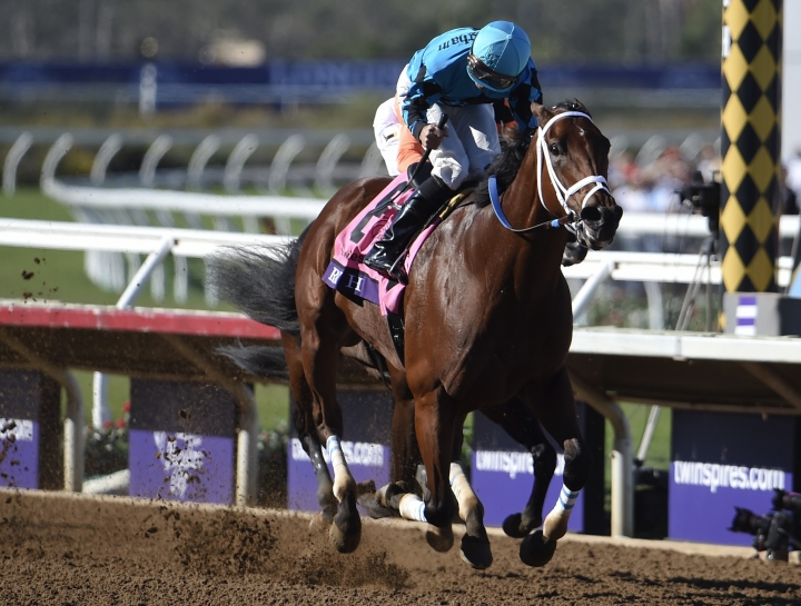 Kent Desormeaux rides Roy H to victory in the TwinSpires Sprint horse race during the Breeders' Cup, Saturday, Nov. 4, 2017, in Del Mar, Calif. (AP Photo/Denis Poroy)