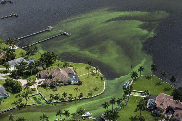 FILE - This Wednesday, June 29, 2016 aerial photo shows blue-green algae in an area along the St. Lucie River in Stuart, Fla. In 2016, Florida's governor declared a state of emergency and beaches were closed when algae blooms spread from Lake Okeechobee to nearby estuaries. (Greg Lovett/The Palm Beach Post via AP)