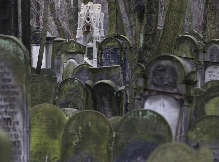 This photo shows gravestones at the Jewish Cemetery on Okopowa Street in Warsaw, Poland, Friday Dec. 22, 2017. The Polish government is donating 100 million zlotys (US$ 28 million) to preserve the cemetery. (AP Photo/Czarek Sokolowski)